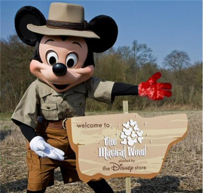 Disney Woodland Blood On Hands