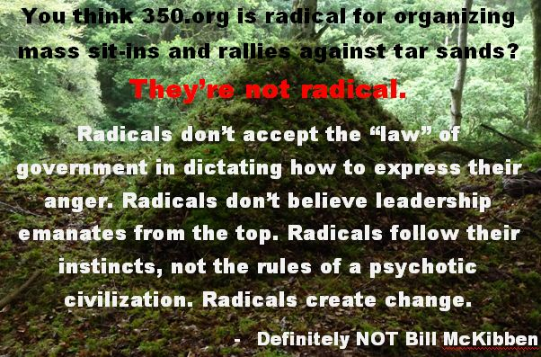 Bill McKibben is not radical